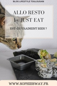 Allo Resto by Just Eat : est-ce vraiment bien ?