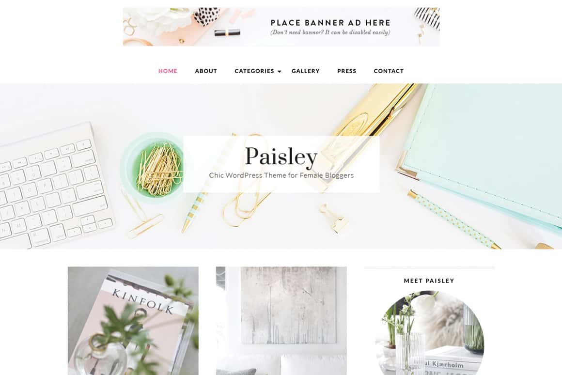 theme - wordpress - template