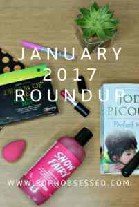 January 2017 round up pin