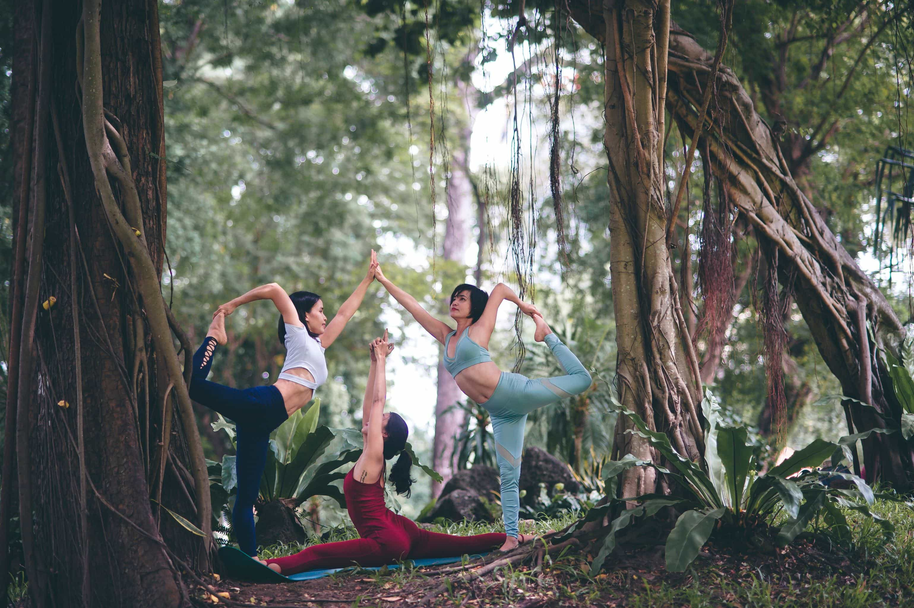 Healthy Living Yoga