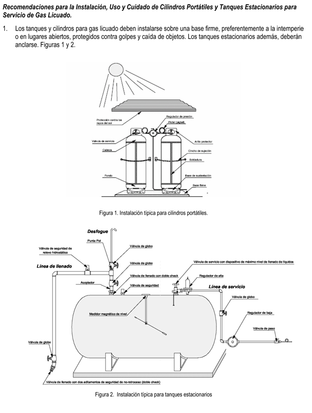 Microsoft Word - Gas LP_v2007.doc