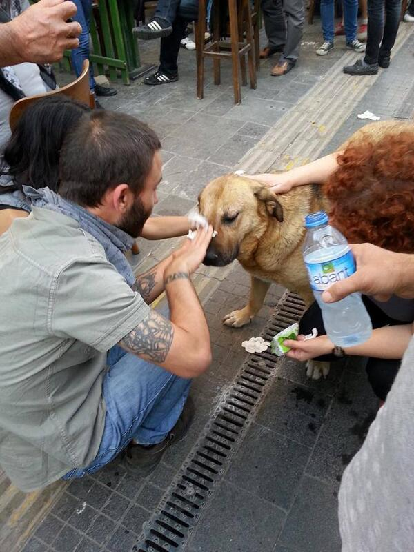 protestas turquia18