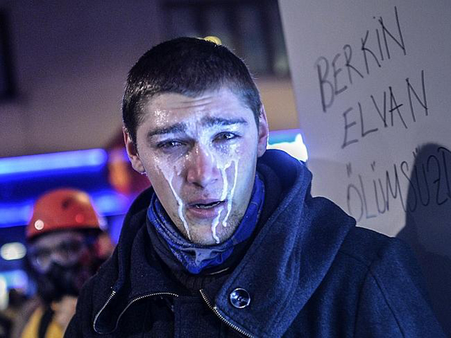 berkin_5