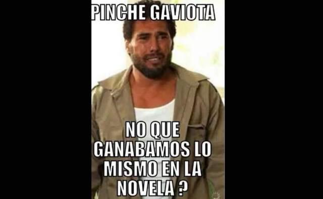 meme angelica rivera14