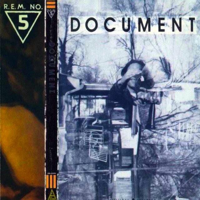 REM Document