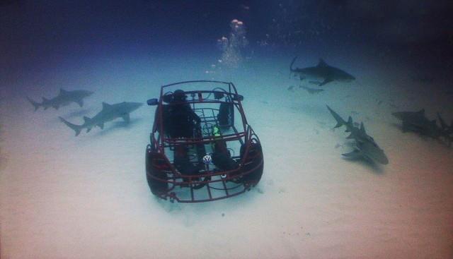 Volkswagen realiza su propia jaula contra tiburones: el Beetle Shark Cage