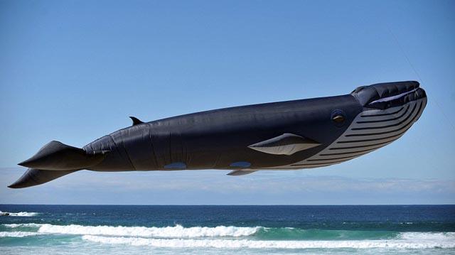 ¿Es un avión? ¿Es una ballena? Los mejores papalotes del mundo