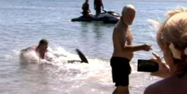 "Anciano galés se echó un ""tirito"" con un tiburón para salvar a unos niños"