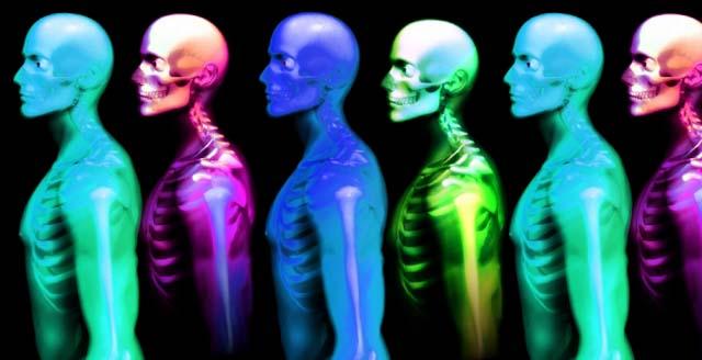 20 cosas que no sabías sobre el cuerpo humano