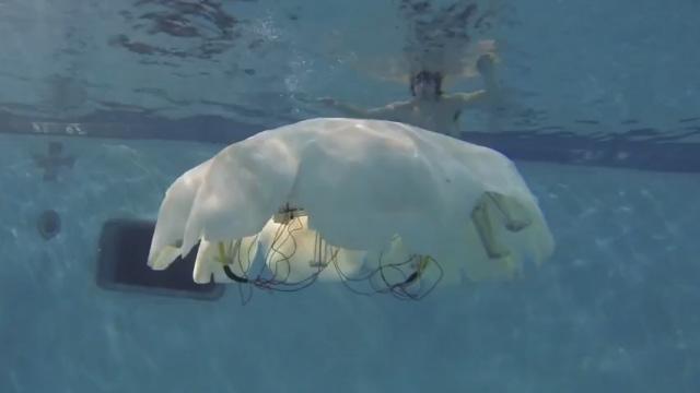 Crean una medusa robot para vigilancia submarina