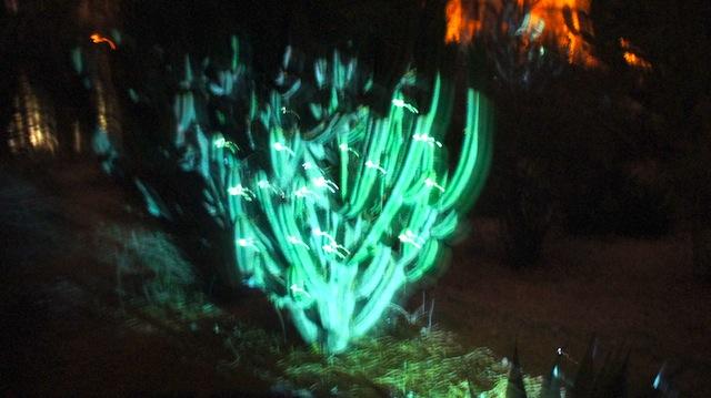 He visto a un alien comerse a un cactus: reseña de Proyecta 2013