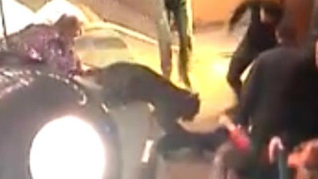 Video: Pantera ataca a indefensa abuelita en un circo