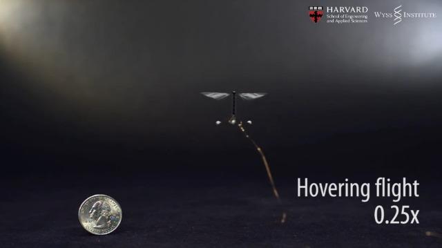 Checa al robot más pequeño del mundo levantar el vuelo