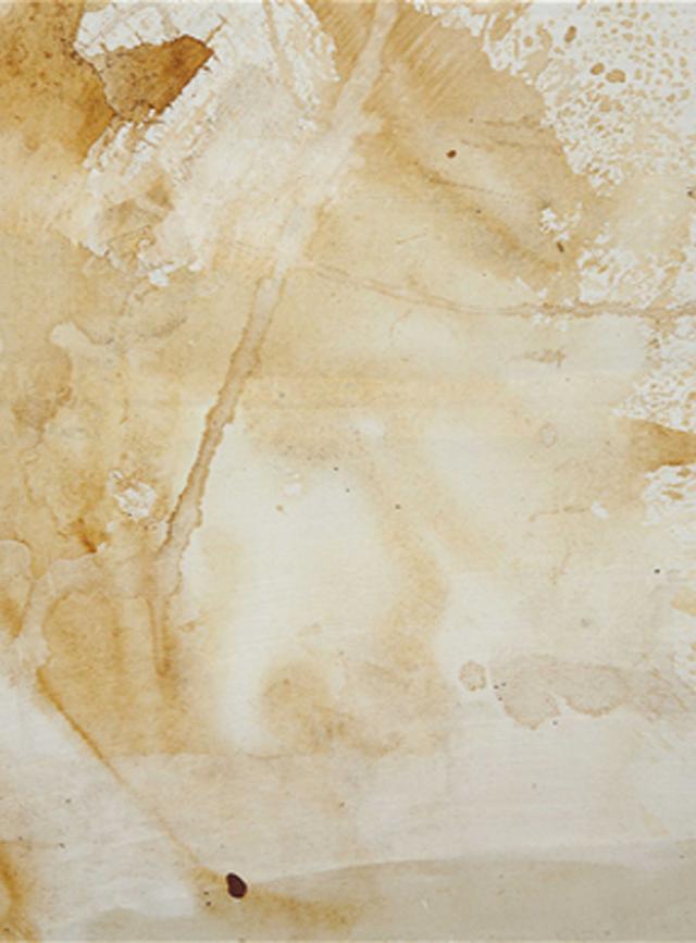 93 mil dólares por un cuadro de Warhol hecho con orina