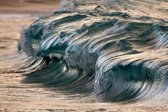 Pierre Carreau le hace honor al Día Mundial de los Océanos