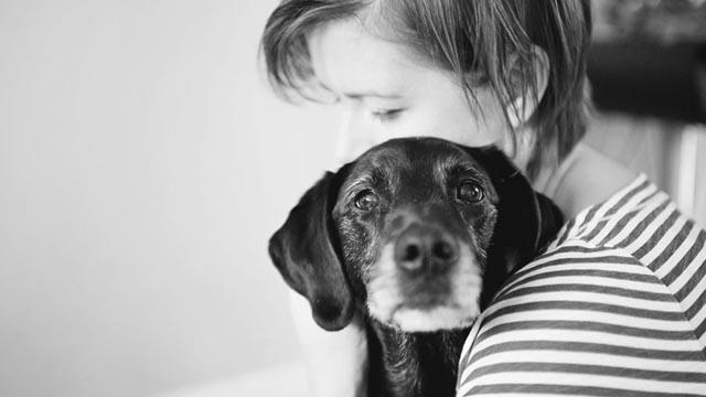 Galería: El último adiós a nuestra mascota