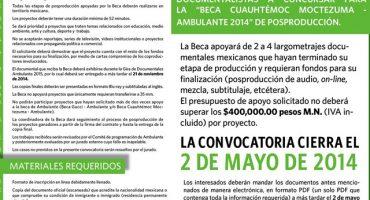 Beca Cuauhtémoc Moctezuma – Ambulante 2014