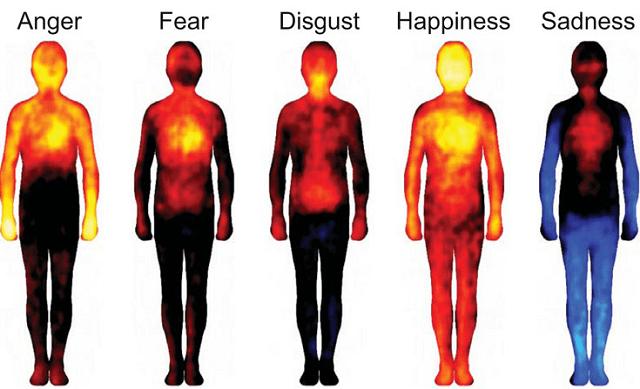 Así se manifiestan las emociones en nuestro cuerpo