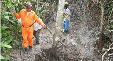 ¿Está naciendo un nuevo volcán en Veracruz?