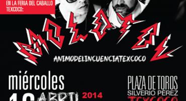 Gana boletos para el concierto de Molotov en Texcoco