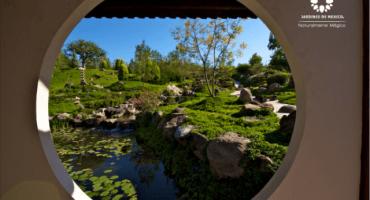El jardín más grande del mundo es increíble... y está en México