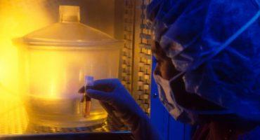 En hospital de Italia, mujer recibe embriones de otra paciente, espera mellizos