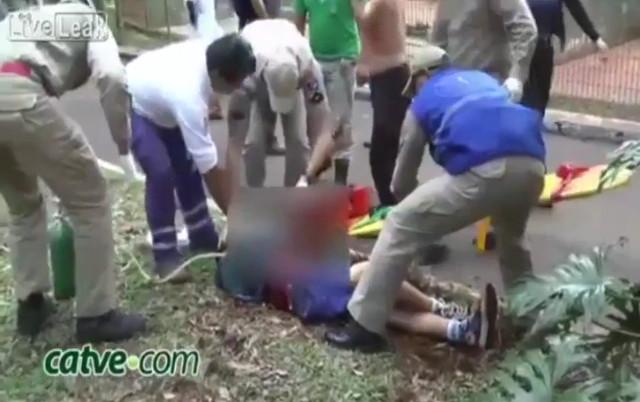Un tigre le arranca el brazo a un niño en un zoológico brasileño