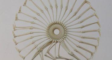 Hermosas esculturas hechas con huesos