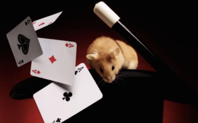 El gran mago del FCE: trucos y reformas a fondo.