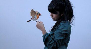 Diana Beltrán Herrera, la artista que convierte el papel en increíbles aves