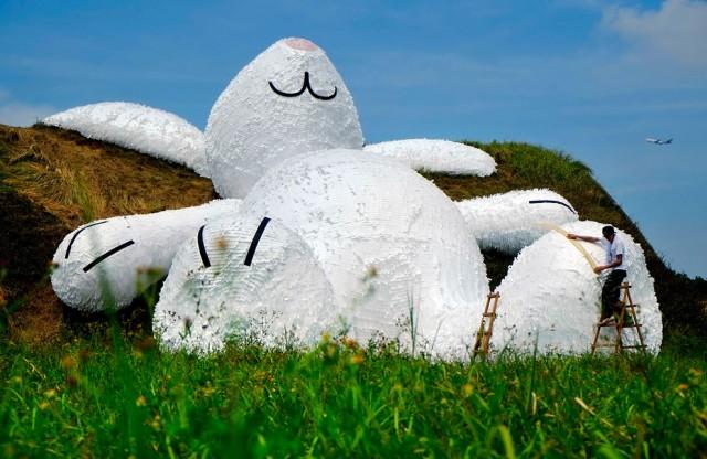 Un conejo gigante aparece en Taiwán