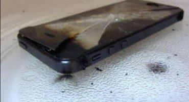 Y en la nota idiota del día... se lo vacilaron y quemó su iPhone en un microondas