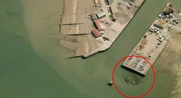 Crabzilla: ¿Toman foto de un cangrejo gigante en Inglaterra?