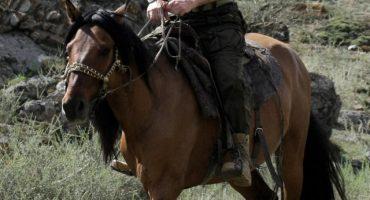 Chelsea Handler se burla de Putin montando a caballo