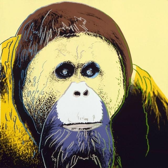 Animales en peligro de extinción, al estilo Andy Warhol