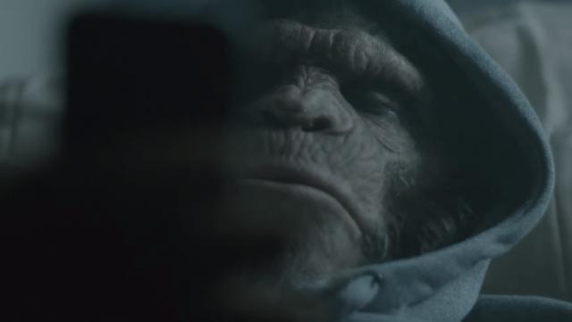 Un simio que vende droga protagoniza el nuevo video de DJ Snake y AlunaGeorge