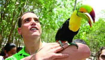 TEPJF pasa la bolita al INE sobre retiro del registro al Verde