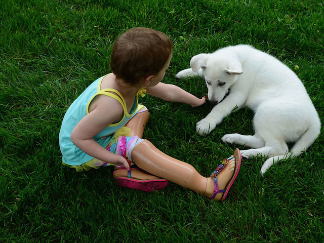 Niña sin dedos adopta a cachorrito sin pata