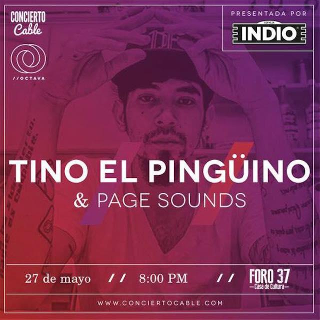 Rumbo al final de temporada de Concierto Cable con Tino el Pingüino + Boletos