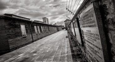 Mira estas terribles fotos del Holocausto en Mauthausen