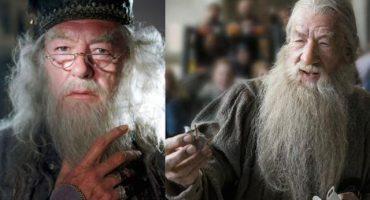 La boda de Dumbledore con Gandalf