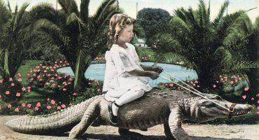Así era el legendario California Alligator Farm