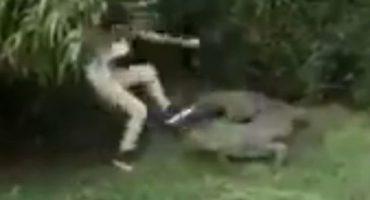 Chica de Monterrey decide saltar barda de seguridad y molestar a cocodrilo