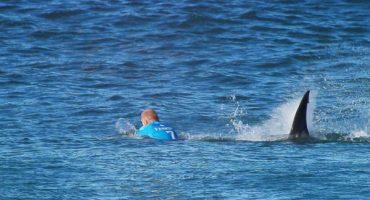 Surfista se salvó del ataque de un tiburón en plena competencia
