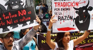 Prohiben las Corridas de Toros en Coahuila