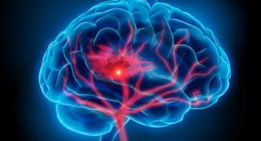 5 ejercicios físicos para mantener en forma tu cerebro