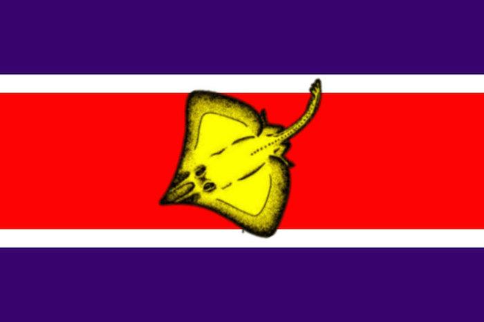 bandera8