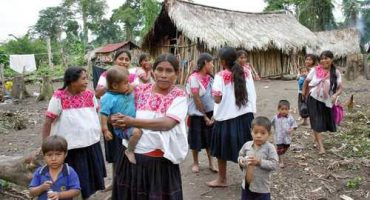 No traducirán Código Penal a indígenas... para qué, si 80% son analfabetas en su lengua, justifica CDI