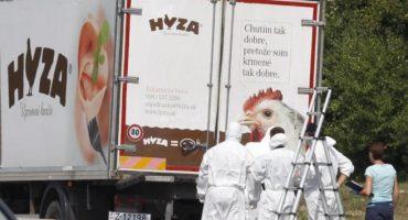 Austria: encuentran a decenas de inmigrantes muertos en camión