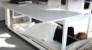 El sueño Godinez: el escritorio que se convierte en cama
